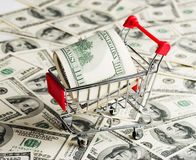 Dollar i shoppingvagn Royaltyfri Fotografi