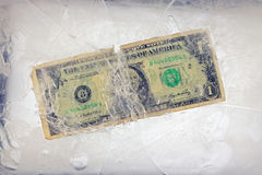 Dollar in the ice Stock Image