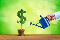 Dollar income growth royalty free stock photography