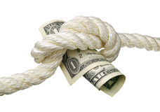 Dollar and a knot Royalty Free Stock Image
