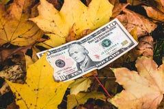 Dollar liegen auf dem gefallenen gelben Blatt, Konzept der Verringerung des p Lizenzfreie Stockfotos