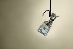 Dollar in a loop the cord internet Stock Photography