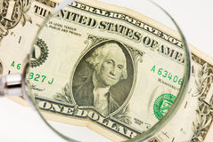 Dollar a magnifier Royalty Free Stock Image