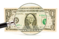 Dollar a magnifier Stock Image