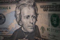 Dollar mit 20 Amerikanern Stockfotografie