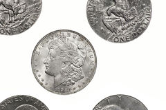 dollar morgan silver royaltyfri foto