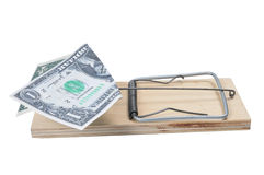 Dollar in mouse trap Stock Photos