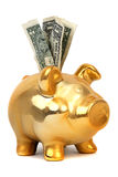 Dollar notes and piggy bank Royalty Free Stock Images