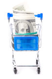 Dollar notes in shopping cart Royalty Free Stock Photos