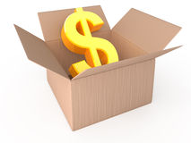 Dollar in opened box Stock Photography