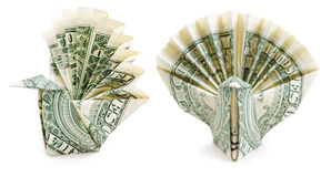 Dollar origami peacock isolated Stock Images