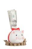 Dollar pinne ut ur svinmoneyboxen Arkivbilder