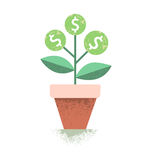 Dollar plant in the pot. Financial growth concept. Vector illustration. Royalty Free Stock Photography