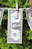 1 dollar räkningar Royaltyfri Bild
