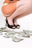 Dollar rain Royalty Free Stock Photos