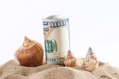 Dollar in sand with shell isolated on white. Summer concept Stock Photos
