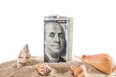 Dollar in sand with shell isolated on white. summer concept.  stock image