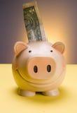 Dollar savings. Piggy porcelain safety dollar money deposit stock images