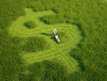 Dollar shaped lawn - money concept stock photo