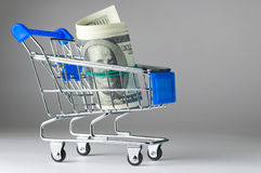 Dollar  in shopping cart Stock Photo