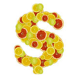 Dollar sign of citrus fruit slices Royalty Free Stock Photo