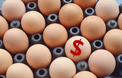Dollar sign with eggs. In the package Stock Photos