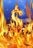 Dollar sign and fire flames. Conceptual image of burning dollar sign and fire flames Stock Photos