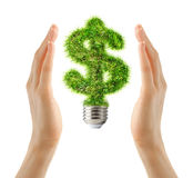 Dollar sign made of grass as bulb in female hands Royalty Free Stock Photo