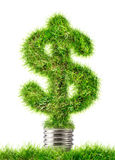 Dollar sign made of grass as lamp bulb Stock Image