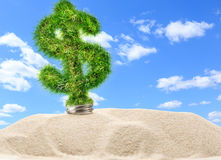 Dollar sign made of green grass as lamp bulb. In sand royalty free stock photo