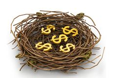 Dollar sign in nest Royalty Free Stock Images