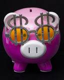 Dollar Sign Piggy Bank Stock Images