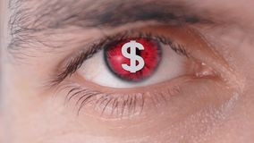 Dollar sign on the pupil of the human eye. Concept of greed for money. Money rules the world