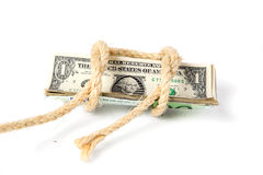Dollar som binds med ett rep Arkivbild