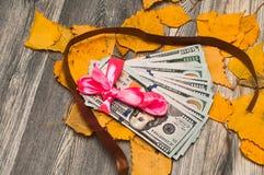 Dollar som en gåva i ett rosa färg- och bruntband Arkivfoton