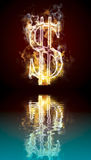 Dollar symbol burning, fire with reflection. In water Stock Images