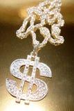 Dollar symbol necklace. Silver dollar symbol necklace closeup Royalty Free Stock Photos