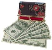 dollar tema Arkivfoton