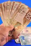 Dollar ter beschikking Royalty-vrije Stock Afbeelding