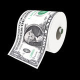 Dollar toilet paper Stock Images