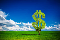 Dollar tree. Painted tree in the form of dollar Royalty Free Stock Photos