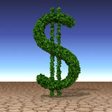 Dollar tree growing in the desert. 3D concept dollar tree growing in the desert Royalty Free Stock Images