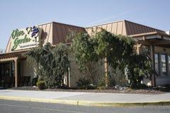 Olive Garden Royalty Free Stock Photo