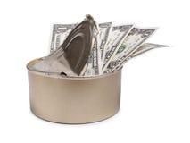 Dollar und kann Lizenzfreies Stockfoto