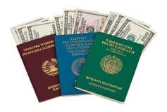 dollar utländska pass oss Arkivbild