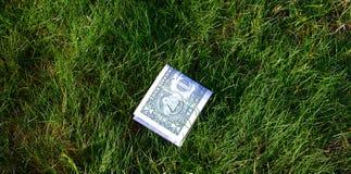Dollar vert plié dans la moitié sur l'herbe verte photographie stock libre de droits