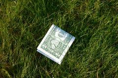 Dollar vert plié dans la moitié sur l'herbe verte photographie stock