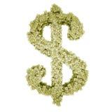 Dollar vom Dollar Lizenzfreie Stockbilder