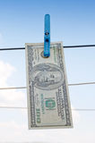 Dollar on the wire Royalty Free Stock Photo