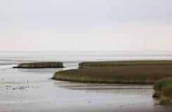 Dollard bred flodmynning nära Nieuw Statenzijl, Holland Arkivfoton
